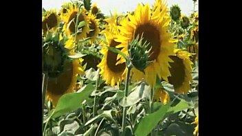 sex on the ground sunflower xxx vibeo amateur - pornify.online