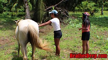 phornhub heatherdeep.com teen girls vs horse size cock